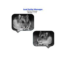 Hamster Message Photographic Print