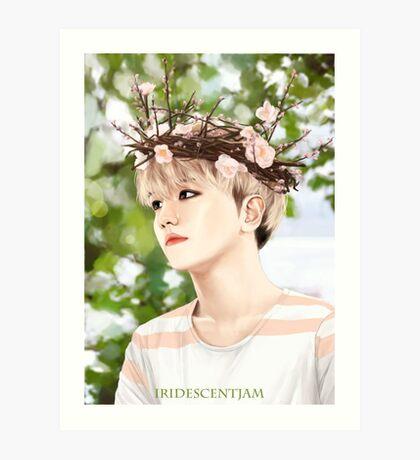 Flower Baby ✿ Baekhyun Art Print