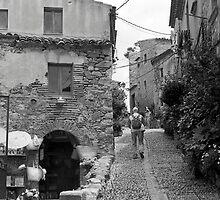 Steady Climb through an Old Castle by James2001