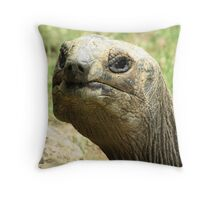 Old Man Tortoise  Throw Pillow