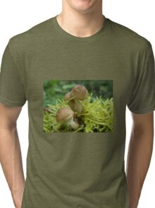 Wild Mushrooms Tri-blend T-Shirt