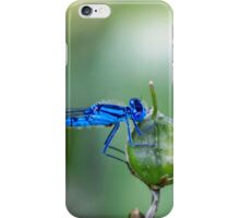 Dragonfly.. iPhone Case/Skin