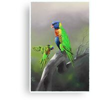 Rainbow Lorikeet Painting Canvas Print