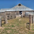 Shearing Shed, Lake Mungo, NSW by Adrian Paul