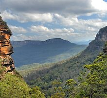 Jamison Valley by Peter Hocking