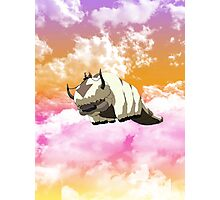 Appa in the Sunset Photographic Print