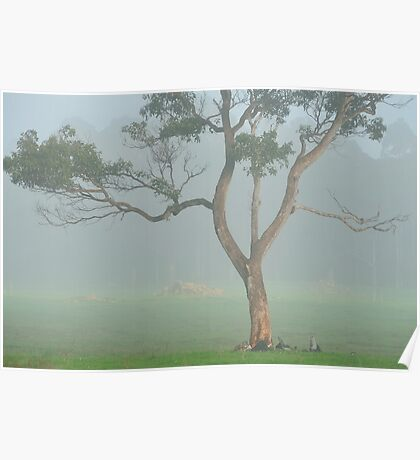 Lonely in the Mist Poster