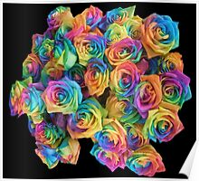 ROSES, ROSE, Rainbow, Bunch, Flowers, Colour, Colourful Poster