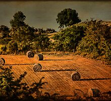 Hay Season by EmvandeBee