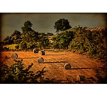 Hay Season Photographic Print