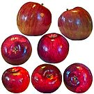 Apple top by Carolyn Clark