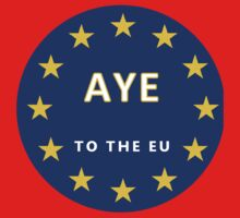 Aye to the EU - Enough With The UK! Baby Tee