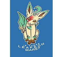 PokéPun - 'Is There Leafeon Mars?' Photographic Print