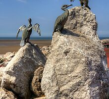 Morecambe Cormorants by Tom Gomez