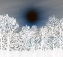 Winter Solstice Sun by Susan Nixon
