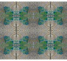Organic Texture Nature Pattern Photographic Print
