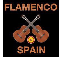 Flamenco spain Photographic Print