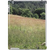 turkey and her poults iPad Case/Skin