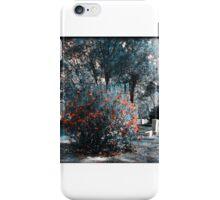 Hidden Hues of Time Artistic Photograph Unique Decor iPhone Case/Skin