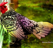 Fancy Chickens:  Silverwing by Bunny Clarke