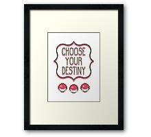 Pokémon - Choose Your Destiny Framed Print
