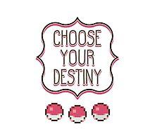 Pokémon - Choose Your Destiny Photographic Print