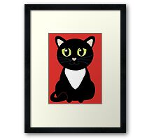 Only One Black and White Cat Framed Print