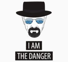 Breaking Bad - I am the danger by Serdar G