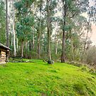 Kennedys Hut, Alpine National Park, Benambra, Victoria, Australia by Michael Boniwell