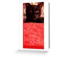 chat Greeting Card