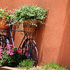 *Garden Bike at La Bastides des Lavandes* by DeeZ (D L Honeycutt)