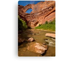 Stevens Arch - Escalante River - Grand Staircase - Utah Canvas Print