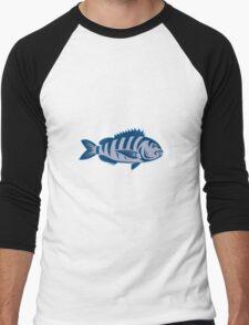 Sheepshead Fish Isolated Retro Men's Baseball ¾ T-Shirt