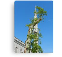 Istanbul - The Minaret and Tree Canvas Print