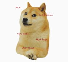Much Shirt Many Doge by CreeperMoon2