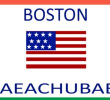 Boston Msaeachubaets Meme Sticker