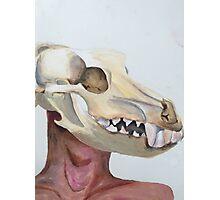 Dog Skull Photographic Print