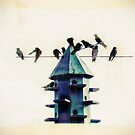 Birds In the House by susan stone