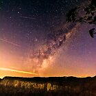 Milky Way Canyon by Tracie Louise