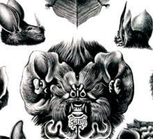 Bats by Haeckel Sticker