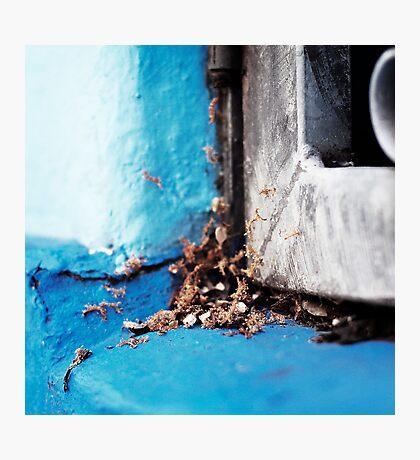 { Corners: where the walls meet #08 } Photographic Print