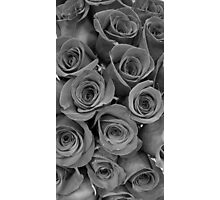 Black and White Roses Photographic Print