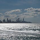 Surfers Paradise! by FangFeatures