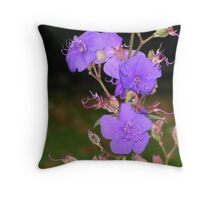 pm1 Throw Pillow