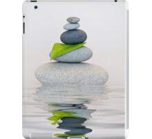Balance iPad Case/Skin