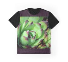 Hen-and-Chicks - Jovibarba heuffelii Graphic T-Shirt