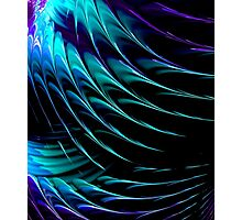 BLUE GREEN WINGS Photographic Print