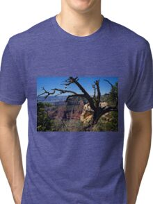 Leaning on the Everlasting Arms Tri-blend T-Shirt