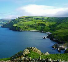 Torr Head  Harbour County Antrim Ireland  by Sean McAughey