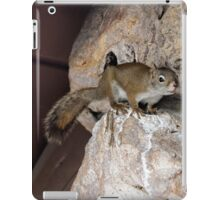Pips the Quick iPad Case/Skin
